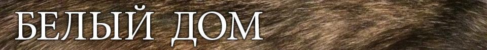Belyy Dom